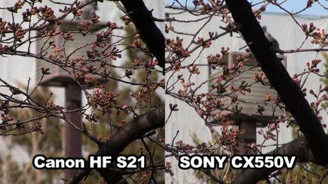 Hf_s21_01