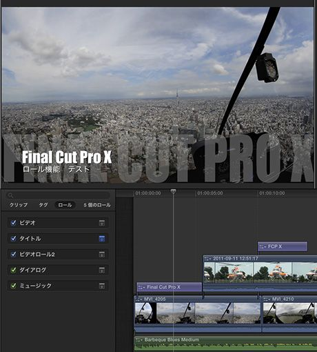 Fcp_x_role_04