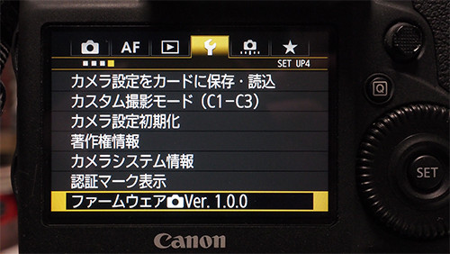 Eos1d_x_mark_ii_1