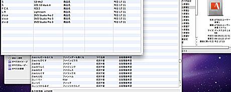 Kawasemi_02